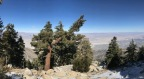 Snow in So Cal – Even in March! A Fun Outing at San Jacinto State Park and the Top of Palm Springs Aerial Tram